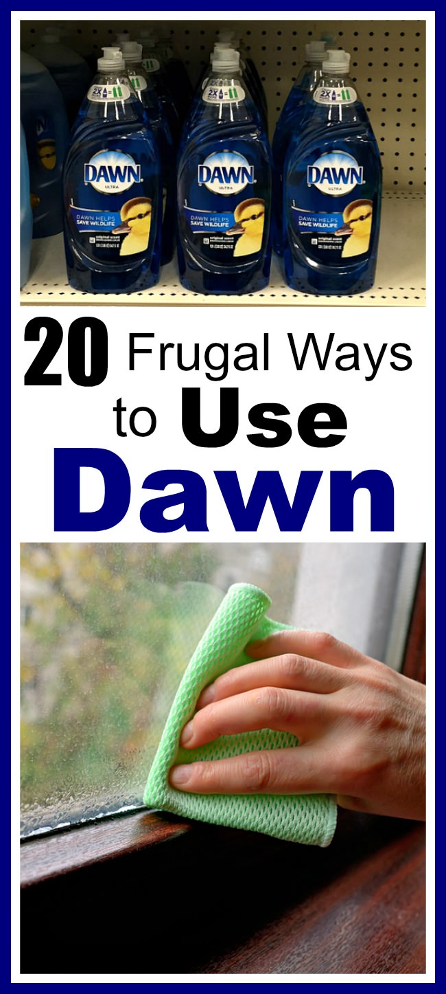 Not just the dishes but there are so many ways to use DAWN soap, you'll be surprised knowing them. Check out a few of the most frugal ways!